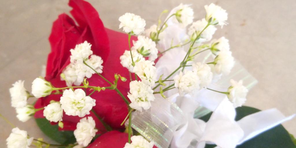 Flowers by Gillian